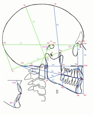 Tri-County Oral-Facial Surgeons -